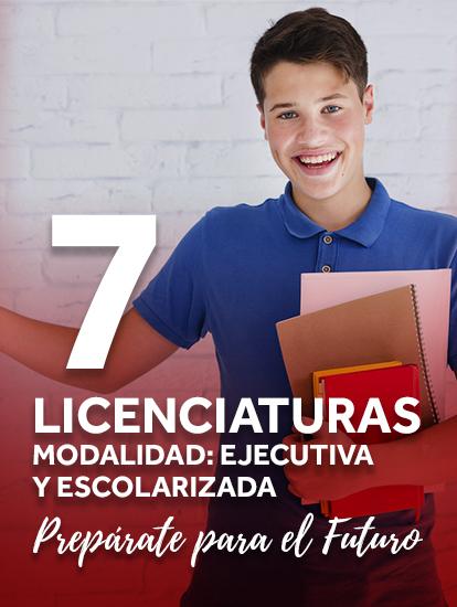 6Licenciaturas